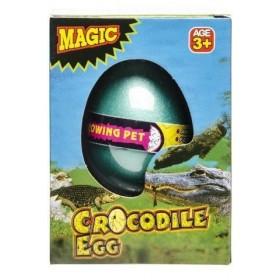 Boîte avec Oeuf Magique Crocodile
