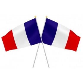 Drapeau France sur Hampe