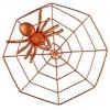 Araignée sur toile géante