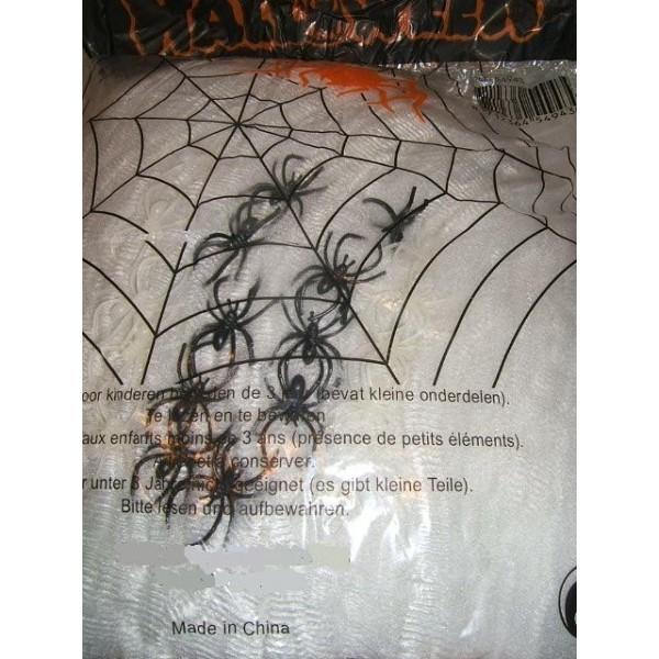 Toile 500 grs avec 25 araignées